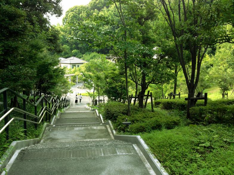 9haku_chaina3