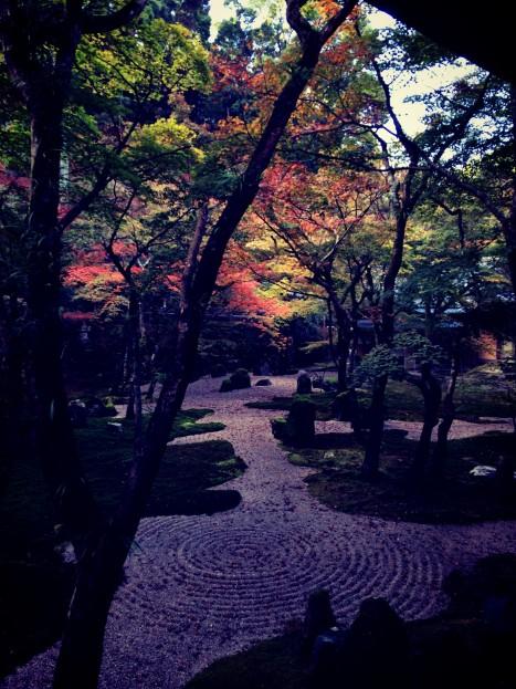 koumyouzennji_aki133