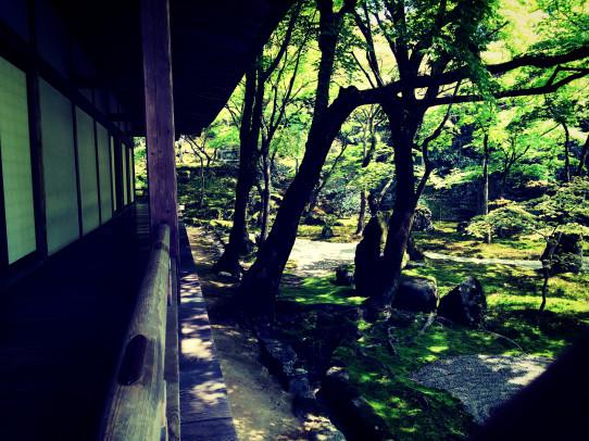 koumyouzenji_jitsusei_2