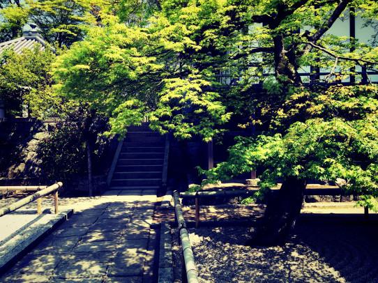 koumyouzenji_jitsusei_7