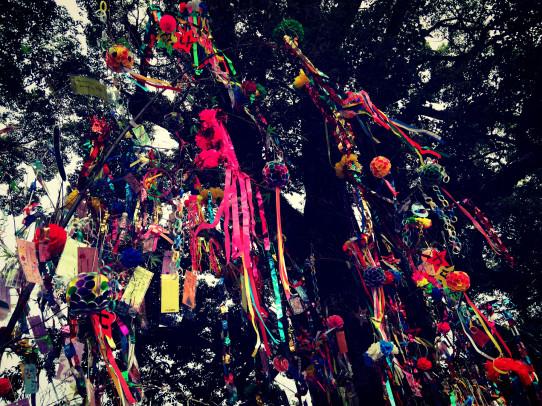 tanabata_j_2014_6