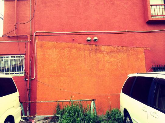 camera_roll_7