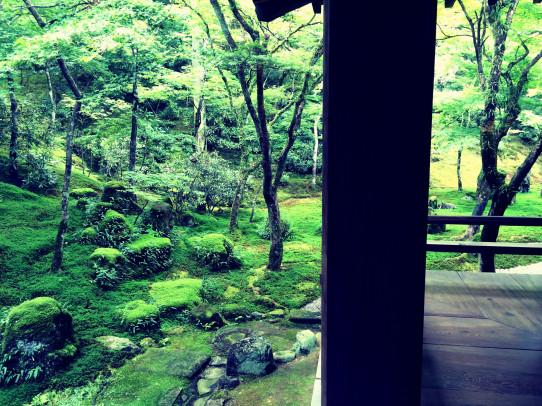 koumyouzenji_140814_5