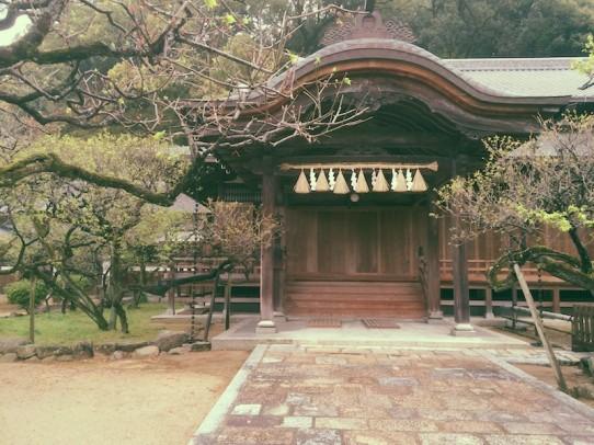 dazaifu_rainyday_8