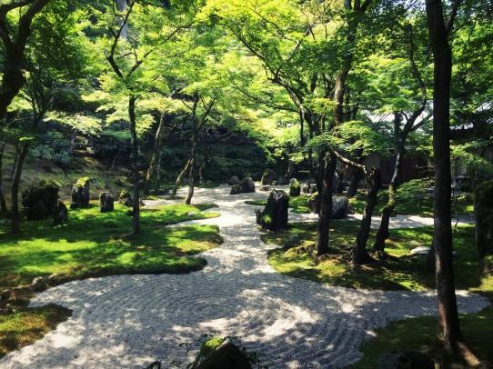 koumyouzenji_150812_4