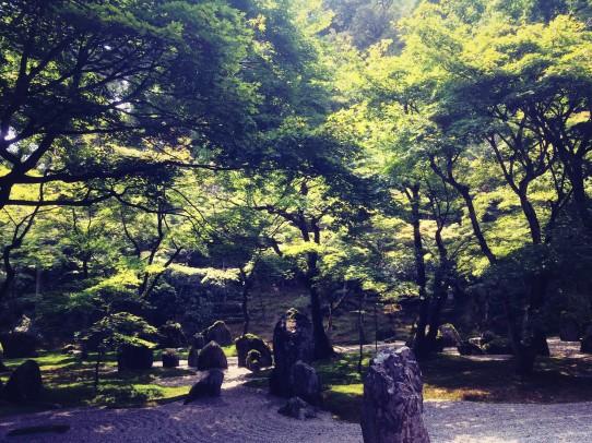 koumyouzenji_150812_5