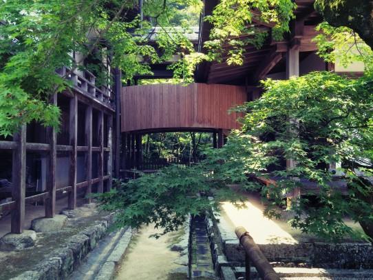 koumyouzenji_150812_9