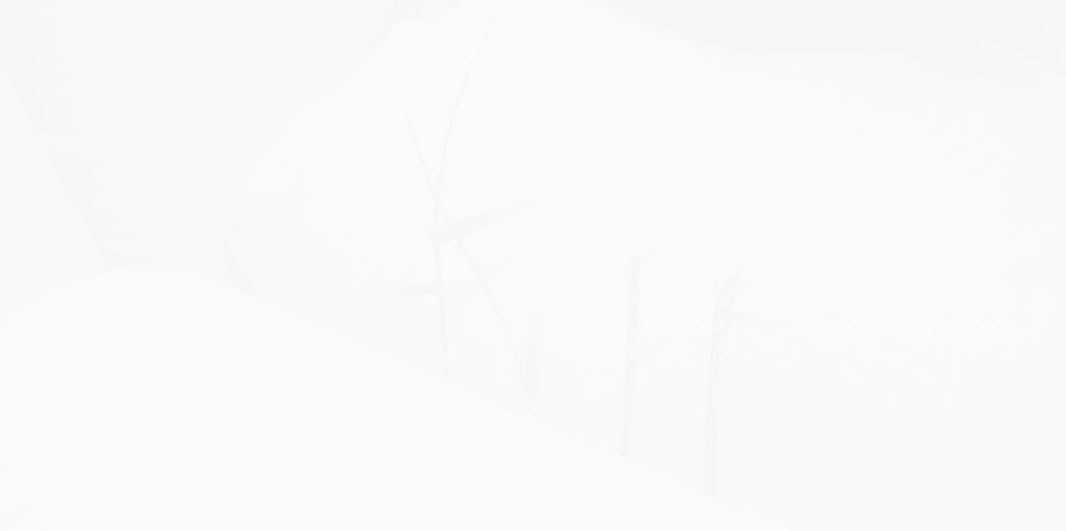 monochrome-no-0008090827